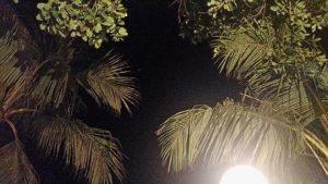 バリ サヌールのタンジュンサリホテルのディナーで見上げた夜空