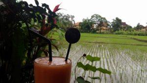 バリ島ウブドの田んぼカフェ