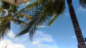 バリ サヌールビーチ 青空とヤシの木で南国ムード