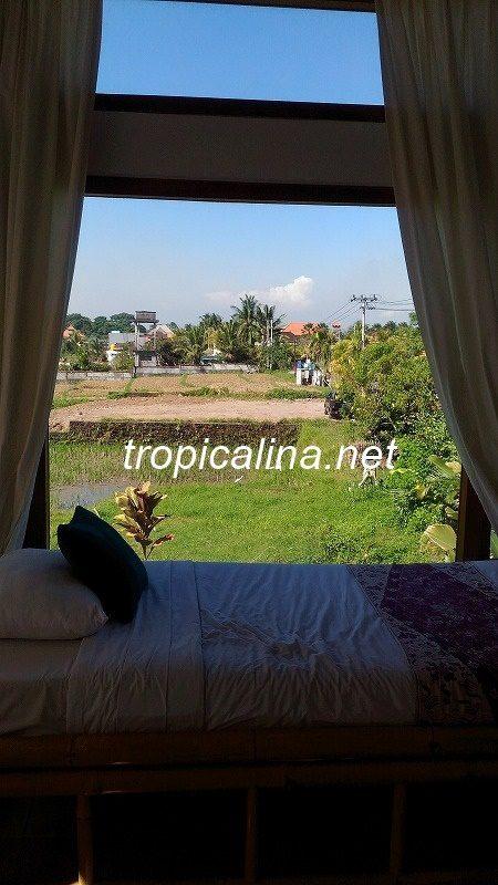 Ubud Bisma street view from room Kama Bisma Cottage